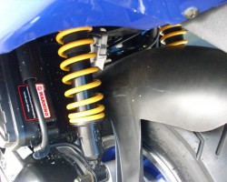 Rear Double Shock Absorber